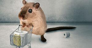 Gegen Hamsterkaufe Fur Solidaritat Dgb Rechtsschutz Gmbh